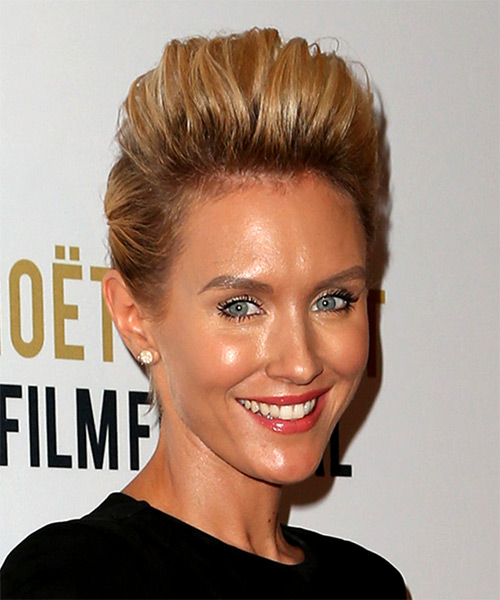 Nicky Whelan Eye-Catching Short Straight Casual Updo Hairstyle - Medium Blonde Hair Color - side view