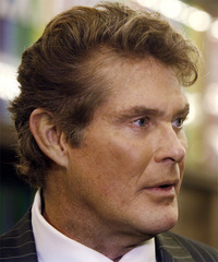 David Hasselhoff Hairstyle - click to view hairstyle information
