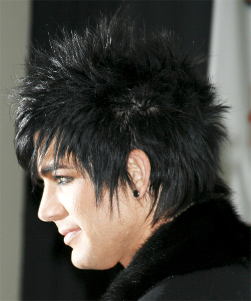 Adam Lambert Short Straight Hairstyle - side view 1