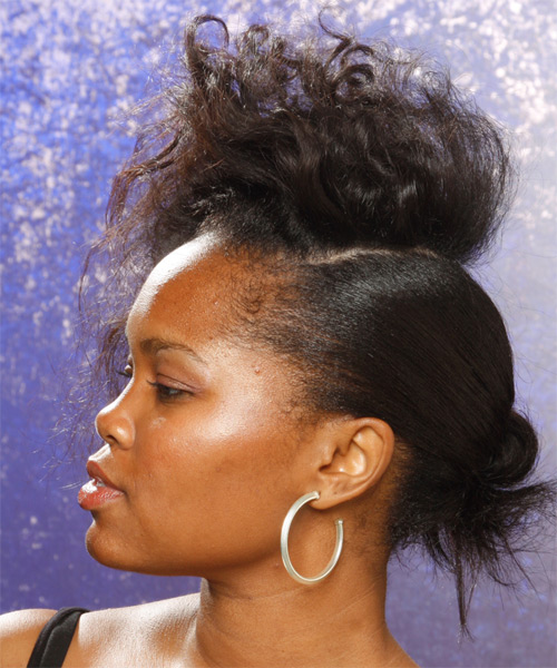 Alternative Curly Updo Hairstyle - Black - side view 1