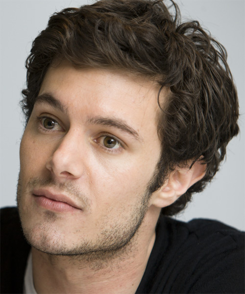 Adam Brody - Wavy  Short Wavy Hairstyle - side view 1