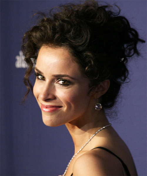 Abigail Spencer Updo Long Curly Formal  - side view
