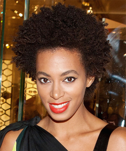 Solange Knowles Short Curly Afro Hairstyle - Dark Brunette (Chocolate) - side view