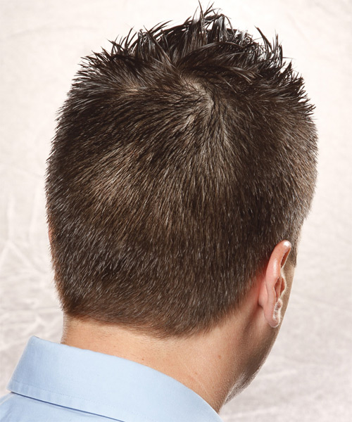 Short Straight Casual Hairstyle - Dark Brunette (Ash) - side view 1