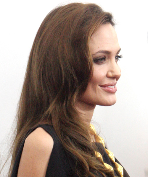 Angelina Jolie Long Straight Hairstyle - Medium Brunette (Ash) - side view