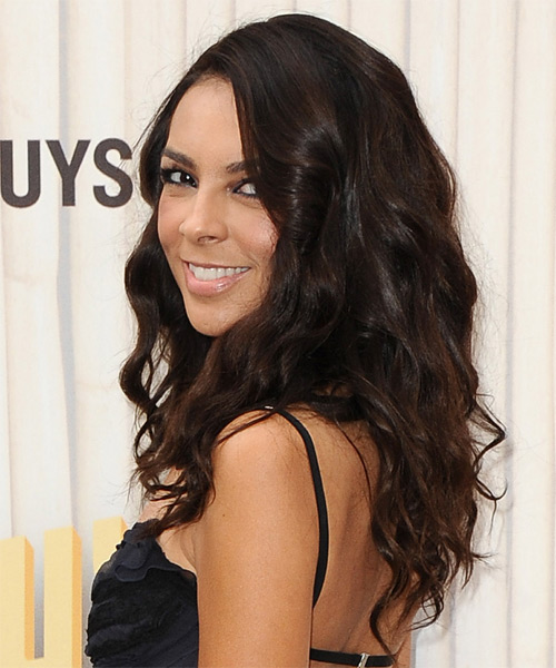 Terri Seymour Long Wavy Casual Hairstyle - Medium Brunette (Chocolate) Hair Color - side view