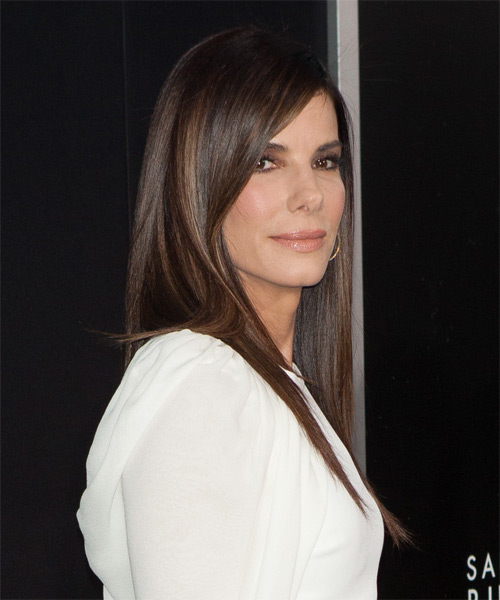 Sandra Bullock Long Straight Hairstyle - Medium Brunette - side view