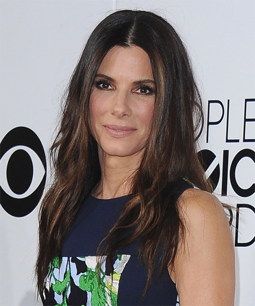 Sandra Bullock Long Straight Hairstyle - Dark Brunette - side view 1