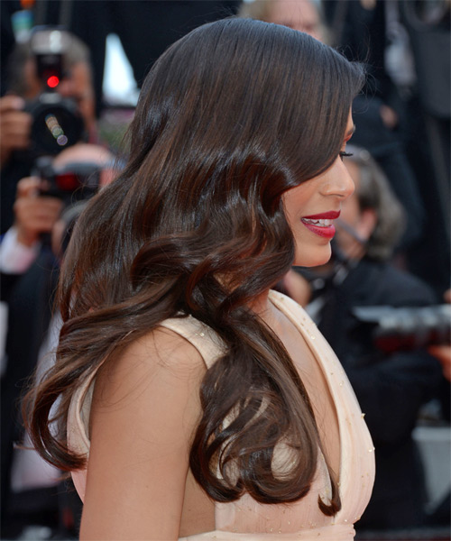 Freida Pinto Long Straight Hairstyle - Dark Brunette - side view