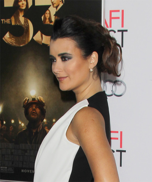 Cote de Pablo Long Wavy Formal Updo Hairstyle - Black Hair Color - side on view