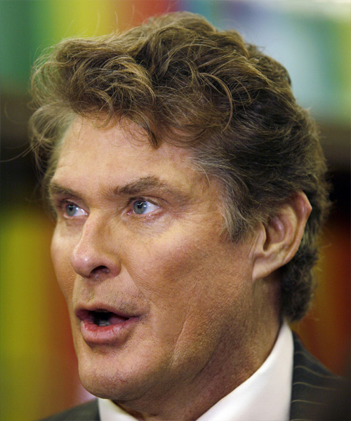 David Hasselhoff Short Wavy Hairstyle - side view 2