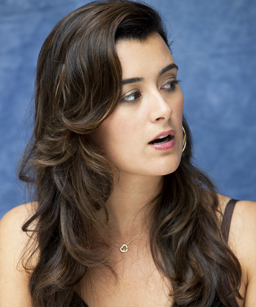 Cote de Pablo Long Wavy Formal Hairstyle - side on view