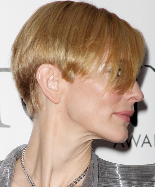Cate Blanchett Short Straight Formal Hairstyle - side on view