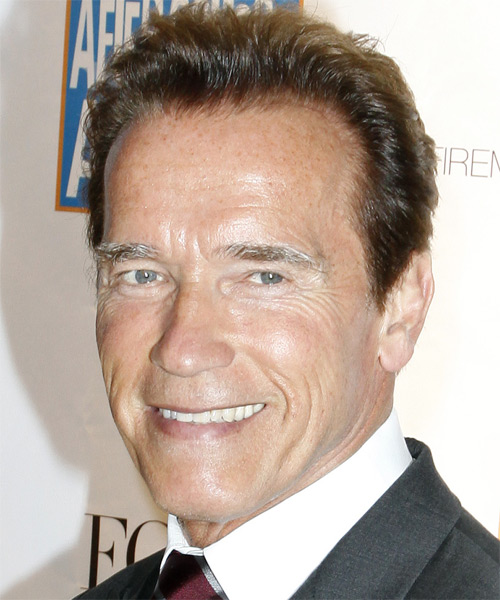 Arnold Schwarzenegger Short Straight Hairstyle - side view 2