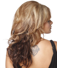 Formal Hairstyles, Long Hairstyle 2011, Hairstyle 2011, New Long Hairstyle 2011, Celebrity Long Hairstyles 2063