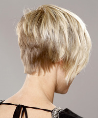 Short Straight Casual Hairstyle - click to view hairstyle information