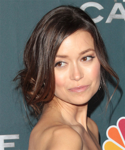 Summer Glau - Casual Updo Long Straight Hairstyle - side view
