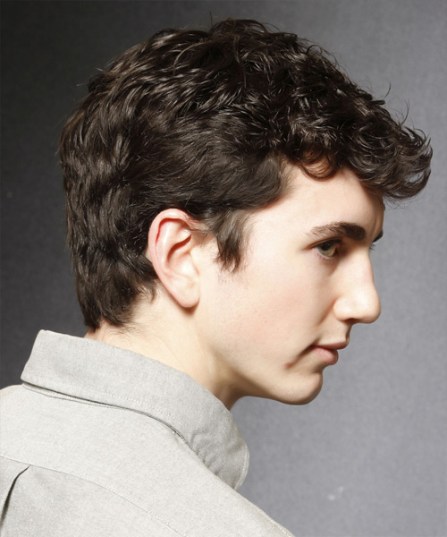 Short Curly Casual  - Dark Brunette - side on view
