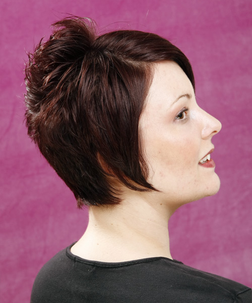 Short Straight Alternative Hairstyle - Medium Brunette (Mocha) - side view 2