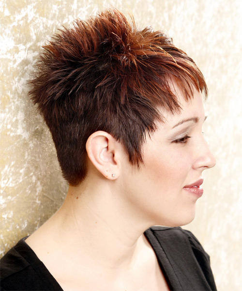 Short Straight Formal Hairstyle - Dark Brunette (Mahogany) Hair Color - side on view