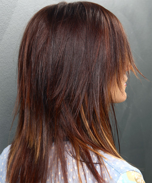 Long Straight Alternative Hairstyle - Medium Brunette Hair Color - side on view