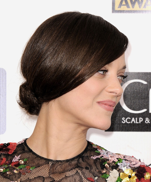 Marion Cotillard Formal Straight Updo Hairstyle - Medium Brunette (Chocolate) - side view