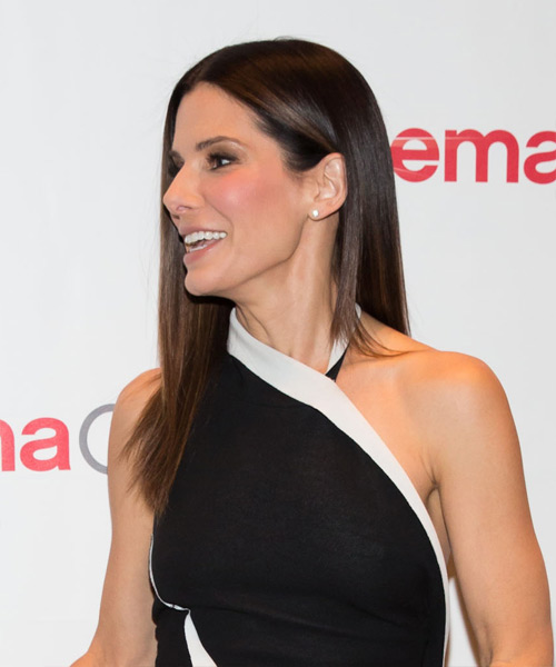 Sandra Bullock Long Straight Hairstyle - Medium Brunette (Chocolate) - side view