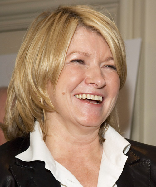 Martha Stewart Medium Straight Casual Hairstyle - side on view