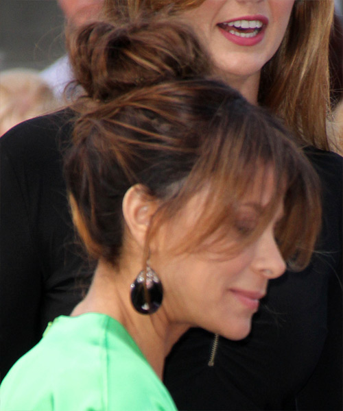 Paula Abdul Casual Straight Updo Hairstyle - Medium Brunette (Chocolate) - side view 2