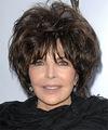 Carole Bayer Sager Hairstyle