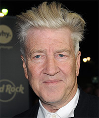 David Lynch Hairstyle - click to view hairstyle information