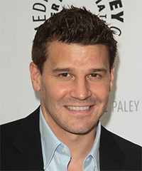 David Boreanaz Hairstyle - click to view hairstyle information