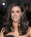 Abigail Spencer Hairstyle