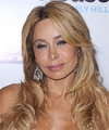 Faye Resnick Hairstyles