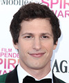 Andy Samberg Hairstyles