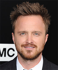 Aaron Paul Hairstyle - click to view hairstyle information