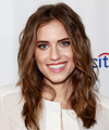 Allison Williams Hairstyles
