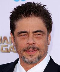 Benicio Del Toro - Short Straight