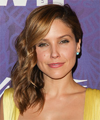 Sophia Bush - Half Up Long Curly Formal