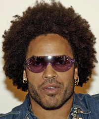 Lenny Kravitz Hairstyle - click to view hairstyle information