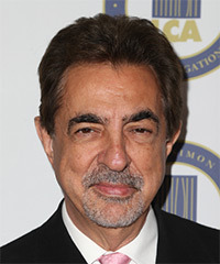 Joe Mantegna Hairstyles