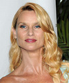 Nicollette Sheridan Hairstyle