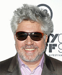 Pedro Almodovar Hairstyle - click to view hairstyle information