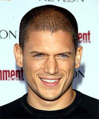 Wentworth Miller Hairstyles