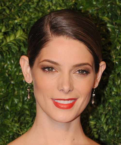 Ashley Greene Long Straight Formal Wedding Updo Hairstyle   - Medium Brunette