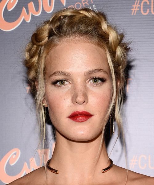Erin Heatherton Long Straight Casual Braided Updo Hairstyle   - Dark Blonde