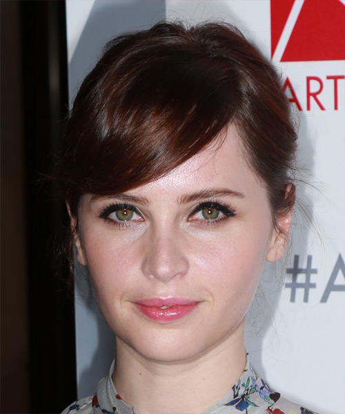 Felicity Jones Long Straight Casual  Updo Hairstyle   - Medium Brunette