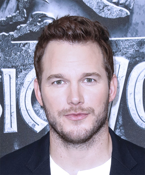 Chris Pratt Short Straight Casual   Hairstyle   (Chocolate)