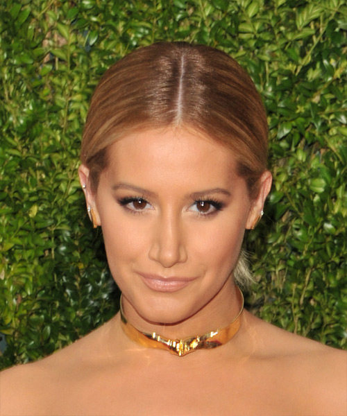 Ashley Tisdale Long Straight   Light Chestnut Brunette  Updo