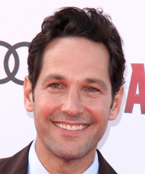 Paul Rudd Short Wavy Casual   Hairstyle   - Medium Brunette